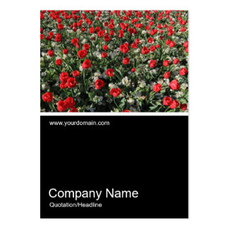 Half&Half Photo 0316 - Red Tulips and Primroses Large Business Card