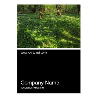 Half&Half Photo 0366 - Spring in the Woods Business Card Template