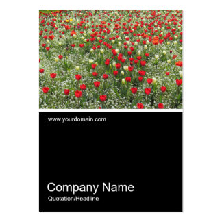 Half&Half Photo 0379 - Bed of Tulips Large Business Card
