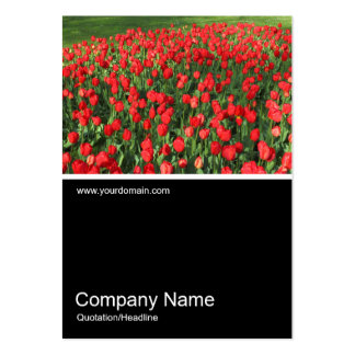 Half&Half Photo 0382 - Bed of Red Tulips 02 Large Business Card