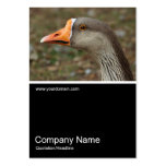Half&Half Photo 0389 - Greylag Swan Goose Cross Business Card Templates