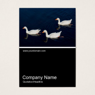 Half&Half Photo - Three Emden Geese Business Card