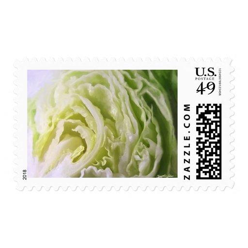 Half Lettuce 1 Postage Stamp