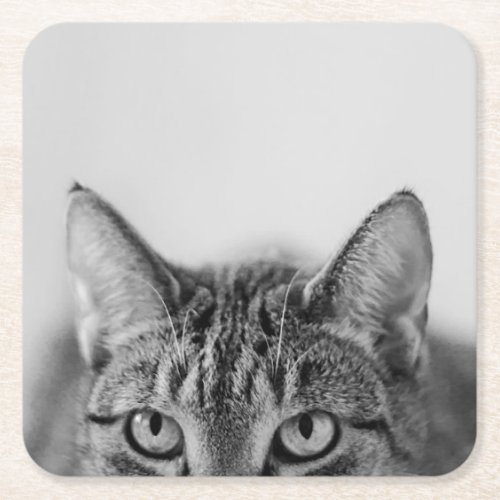 Half of the cat portrait square paper coaster