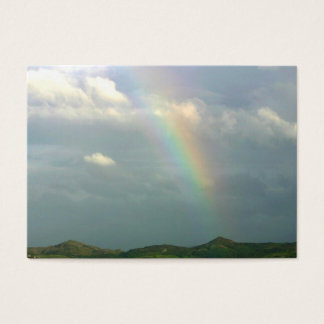 Half Rainbow Business Card