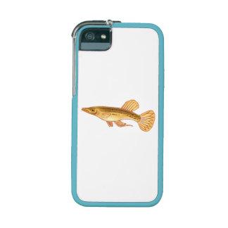 Halfbeak Fish iPhone 5/5S Cases