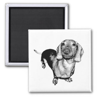 Halftone Black and White Photo Dachsund Doxie 2 Inch Square Magnet