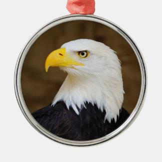Haliaeetus americano Leucocephalus de Eagle calvo Adorno Redondo Plateado