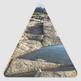 Halibut Point Before Sunset Triangle Sticker
