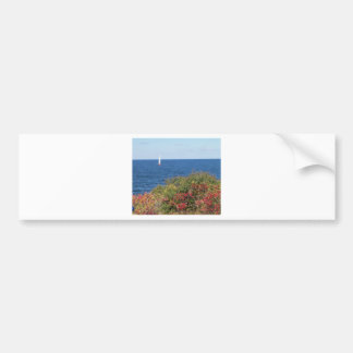 Halibut Point - Rockport Bumper Sticker