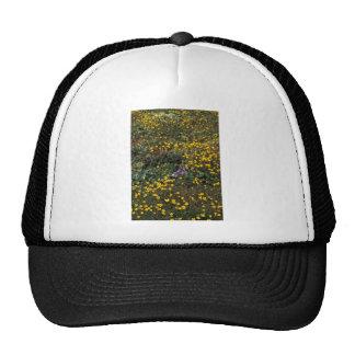 Hall Island wildflowers, Bog Saxifrage Trucker Hat