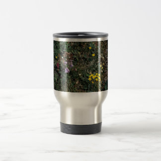 Hall Island wildflowers -Bog Saxifrage, Jacob's la Mugs