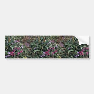 Hall Island wildflowers, Lousewort, Jacobs ladder Bumper Sticker