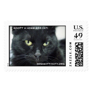 Halle - Adopt A Homeless Cat! Stamp