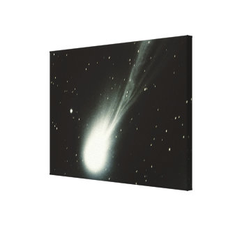 Halleys Comet Canvas Print