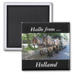 Hallo... from Holland magnet