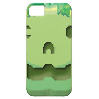 Hallow pumkym iPhone SE/5/5s case