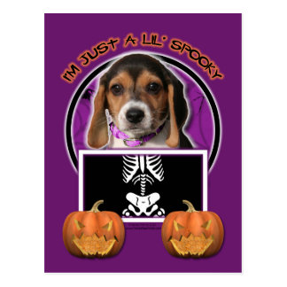Halloween - apenas un Lil fantasmagórico - beagle Postales