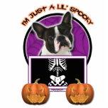 Halloween - apenas un Lil fantasmagórico - Boston  Escultura Fotográfica