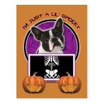 Halloween - apenas un Lil fantasmagórico - Boston  Postales