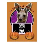 Halloween - apenas un Lil fantasmagórico - canguro Postal