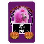 Halloween - apenas un Lil fantasmagórico - caniche Iman De Vinilo