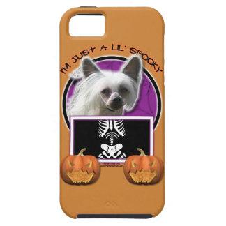 Halloween - apenas un Lil fantasmagórico - Crestie iPhone 5 Case-Mate Funda