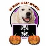 Halloween - apenas un Lil fantasmagórico - golden  Escultura Fotográfica