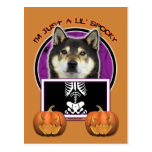 Halloween - apenas un Lil fantasmagórico - Shiba Postal