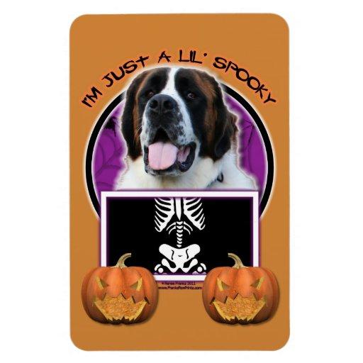 Halloween - apenas un Lil fantasmagórico - St Bern Imán