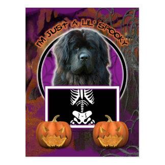 Halloween - apenas un Lil fantasmagórico - Terrano Tarjeta Postal