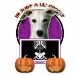 Halloween - apenas un Lil fantasmagórico - Whippet Esculturas Fotográficas