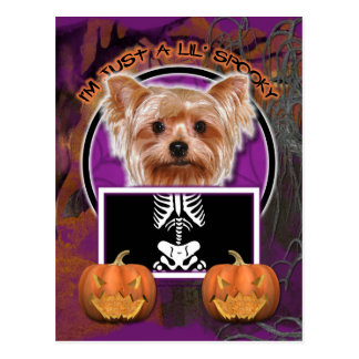 Halloween - apenas un Lil fantasmagórico - Yorkie Postales