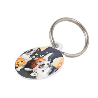 Halloween - Aussie - Oscar & Felix Pet Name Tags