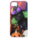 Halloween - barro amasado - margarita Mae iPhone 5 Carcasas