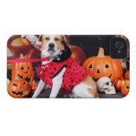 Halloween - beagle Labrador X - Jacob Case-Mate iPhone 4 Protector