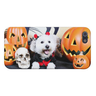 Halloween - Bichon Frise - Andi Covers For iPhone 5