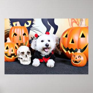Halloween - Bichon Frise - Andi Posters