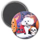 Halloween - Bichon Frise - Mia Refrigerator Magnets
