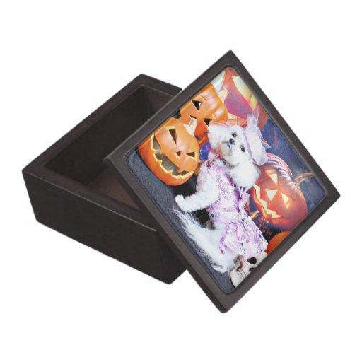 Halloween - Bichon Frise - Mia Premium Jewelry Boxes