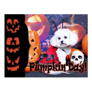 Halloween - Bichon Frise - Mia Postal