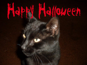 HALLOWEEN BLACK CAT door mat
