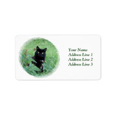 Halloween Black Cat In Grass Avery Address Label at Zazzle