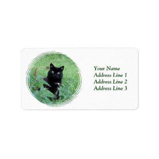 Halloween Black Cat In Grass Avery Address Label at Zazzle