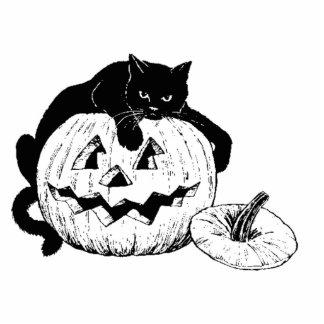 Halloween Black Cat on Pumpkin Acrylic Cut Outs