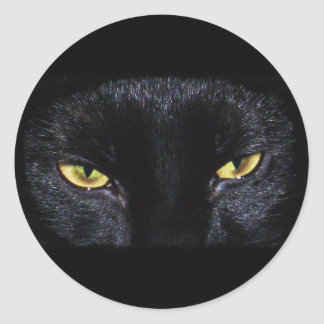 Halloween Black Cat Sticker