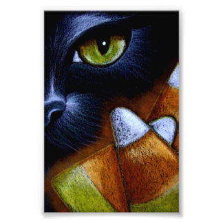 "HALLOWEEN BLACK CAT with CANDY CORNS 4"" X 6"" Photo Print"
