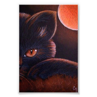 "HALLOWEEN BLACK CAT WITH ORANGE MOON 4"" X 6"" PRINT"