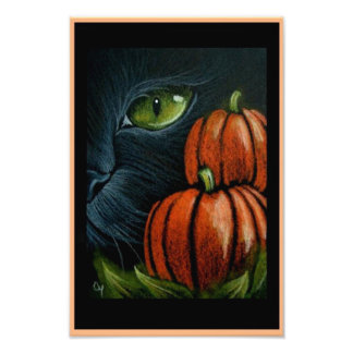 "HALLOWEEN BLACK CAT with PIMPKINS 4"" X 6"" PRINT"