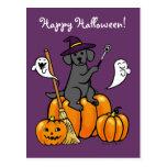 Halloween Black Labrador Cartoon 2 Post Cards